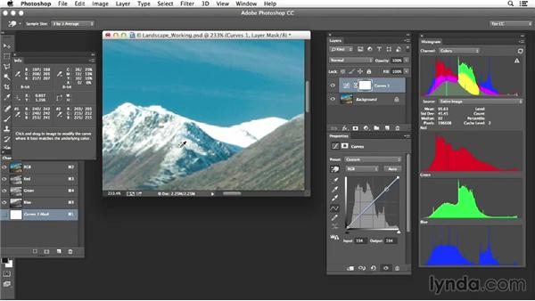 Project one: Adjusting a landscape: Photoshop Color Correction: Advanced Projects