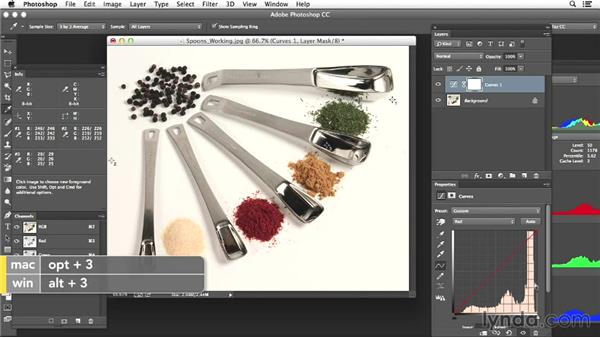 Project three: Adjusting a product shot: Photoshop Color Correction: Advanced Projects