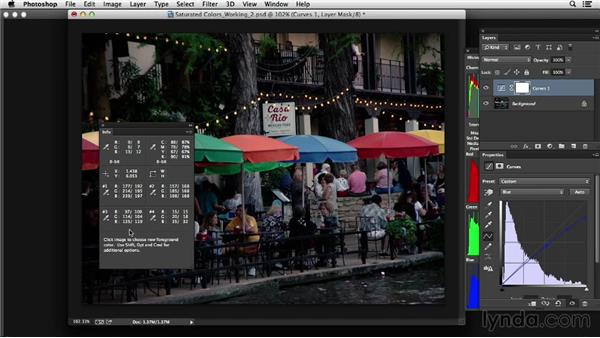 Project four: Correcting saturated colors: Photoshop Color Correction: Advanced Projects
