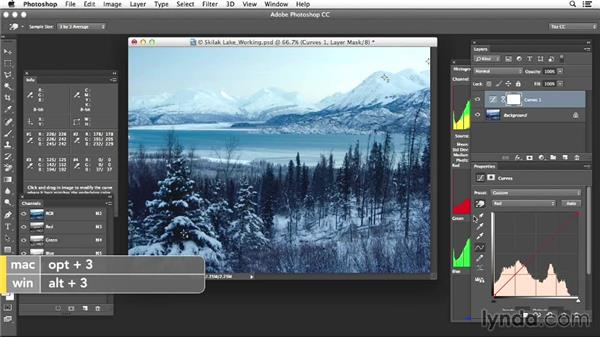 Project five: Changing moods with color adjustments: Photoshop Color Correction: Advanced Projects