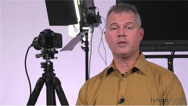 Netting: Lighting a Video Interview