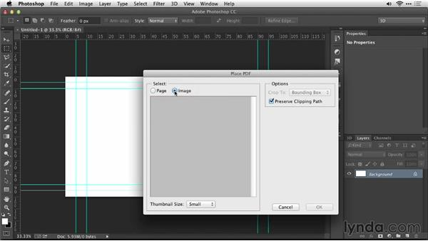 Size a vector logo in Photoshop: Motion Graphics for Video Editors: Creating Animated Logos