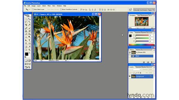 The Default Workspace: Photoshop CS2 Essential Training