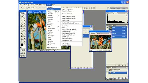 Customizing Your Workspace: Photoshop CS2 Essential Training
