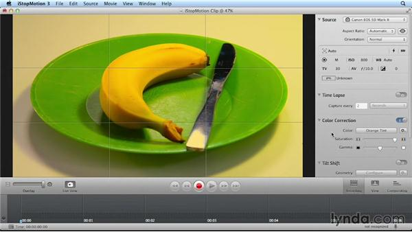 Working with filters and color: Getting Started with Stop Motion Animation