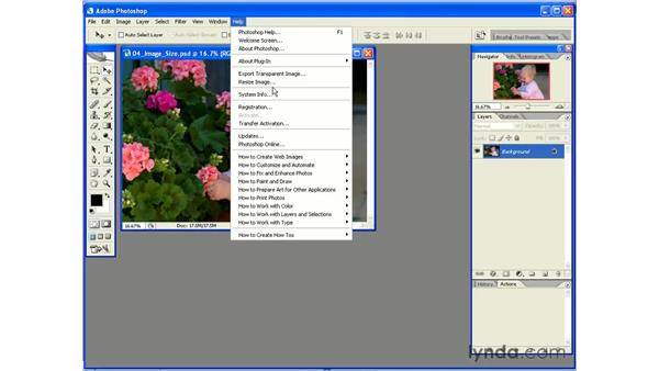 The Resize Image Wizard: Photoshop CS2 Essential Training