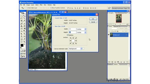 Adding a Border by Extending the Canvas: Photoshop CS2 Essential Training