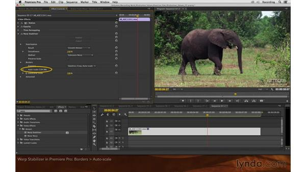 Warp Stabilizer in Premiere Pro: Premiere Pro and After Effects: Enhancing Production Value