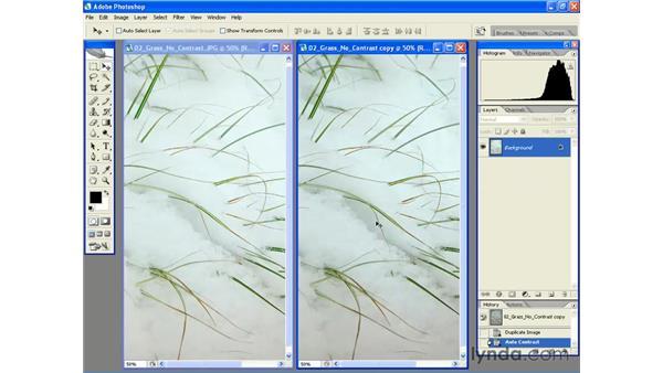 Using the Auto Contrast Command: Photoshop CS2 Essential Training