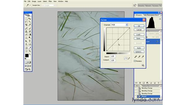 Improving Tonality with Curves: Photoshop CS2 Essential Training