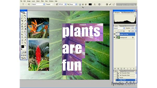 Paragraph (Area) Type: Photoshop CS2 Essential Training