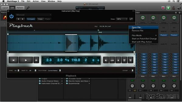 Using markers, Flex mode, and groupings in the Playback plugin