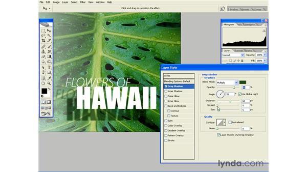 Creating Drop Shadows: Photoshop CS2 Essential Training