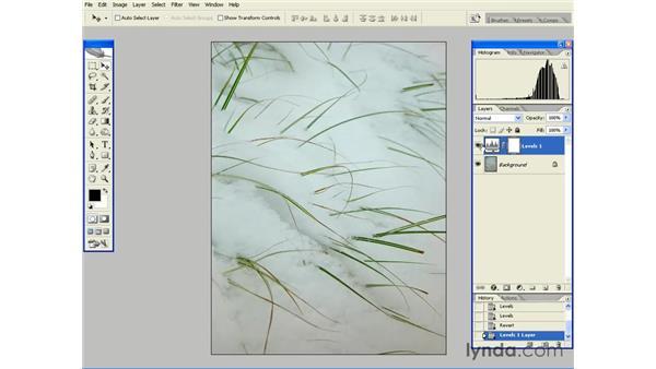 Adjustment Layer Essentials: Photoshop CS2 Essential Training