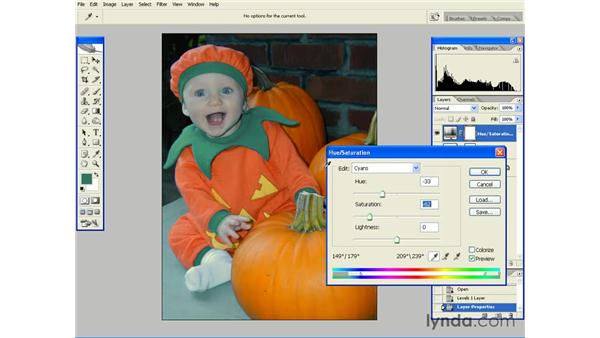 Masking the Effects of an Adjustment Layer: Photoshop CS2 Essential Training