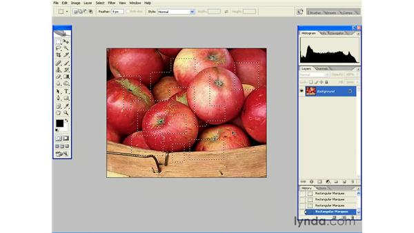 Using the Marquee and Lasoo Tools: Photoshop CS2 Essential Training