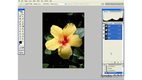 Saving and Reusing Selections: Photoshop CS2 Essential Training