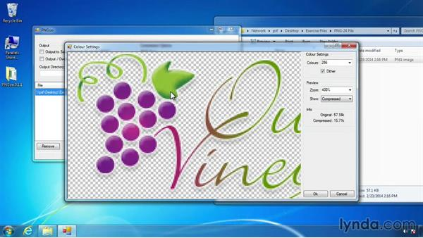 PNG-8 with PNGoo for Windows: Design the Web: Creating Smaller Graphics with PNG-8