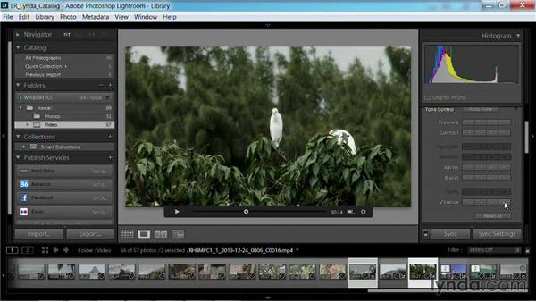 Adjusting the tone of a video clip: Working with Video in Lightroom