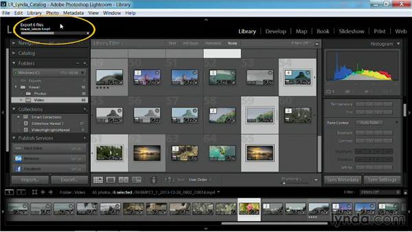 Publishing to a hard drive: Working with Video in Lightroom