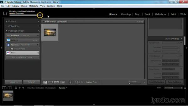 Publishing to Flickr: Working with Video in Lightroom