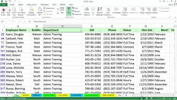 Single- and multiple-column text filtering: Excel 2013: Managing and Analyzing Data