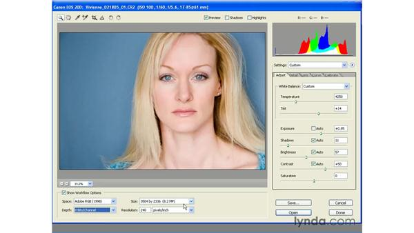 Processing a Camera Raw File: Photoshop CS2 Essential Training