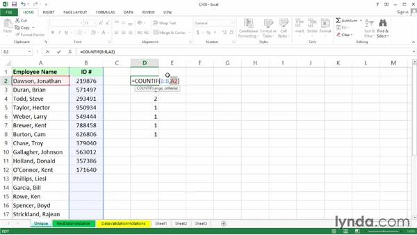 Requiring entries to be unique: Excel 2013: Data Validation in Depth