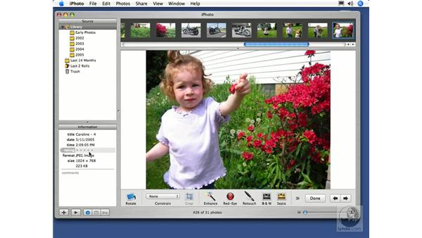 Rating Your Photos: iPhoto 5 Essential Training