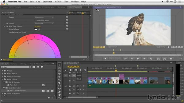 Master clip effects: Premiere Pro: Creative Cloud Updates