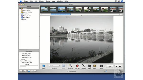 Converting to Black and White, and Sepia: iPhoto 5 Essential Training