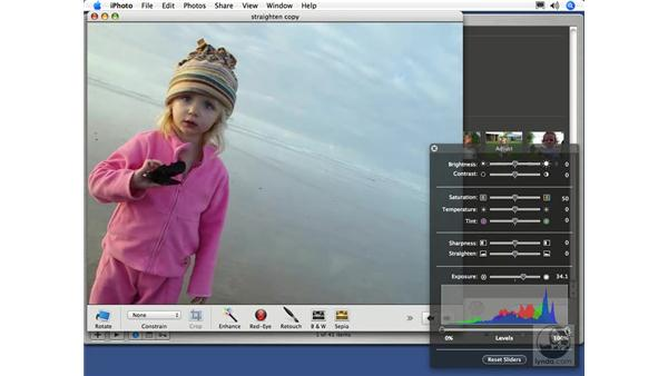 Setting Exposure and Levels: iPhoto 5 Essential Training