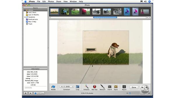 Cropping an Image: iPhoto 5 Essential Training