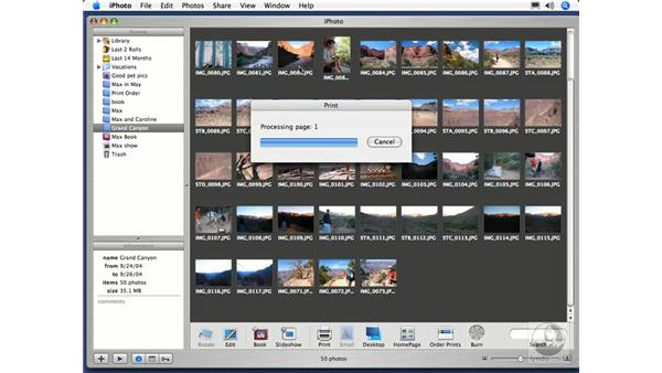 Creating a Poster: iPhoto 5 Essential Training