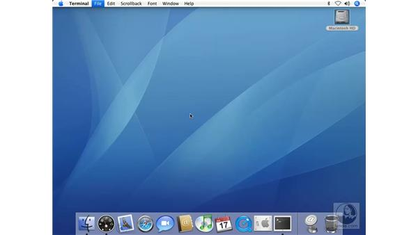Changing Directory in Terminal: Mac OS X 10.4 Tiger Beyond the Basics