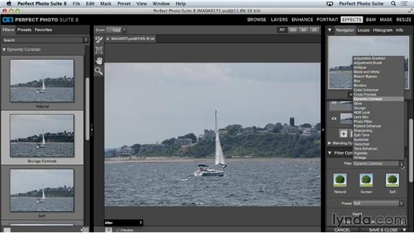 Effect presets: Up and Running with Perfect Photo Suite 8