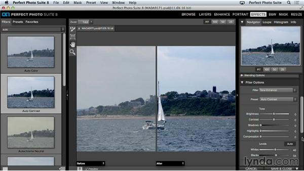 Modifying effect presets: Up and Running with Perfect Photo Suite 8
