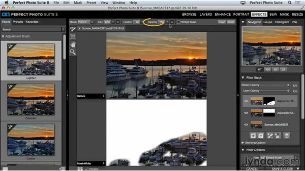 Adjustment brushes: Up and Running with Perfect Photo Suite 8