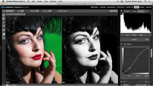 The special brushes of the B&W module: Up and Running with Perfect Photo Suite 8