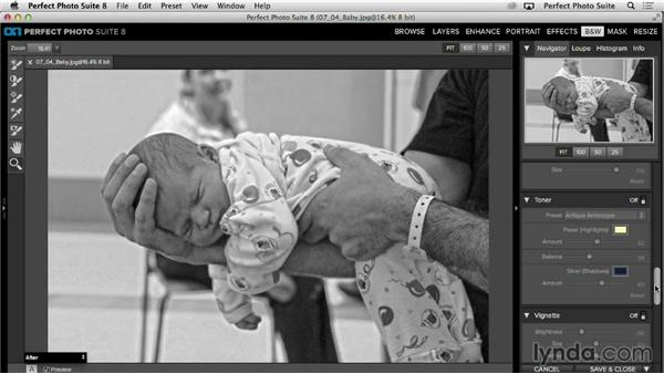 Advanced Navigator adjustments: Up and Running with Perfect Photo Suite 8