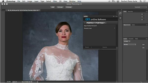 Photoshop: Up and Running with Perfect Photo Suite 8