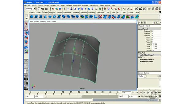 NURBS Primitives / Components: Maya 6.5 Essential Training