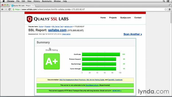 Auditing and testing your secure servers: Heartbleed Tactics for Small IT Shops