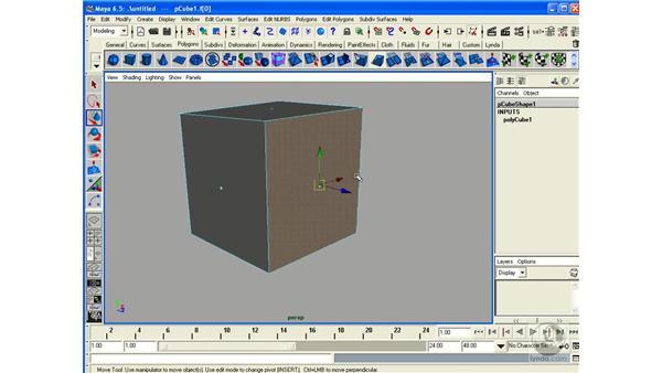 Polygonal Primitives: Maya 6.5 Essential Training