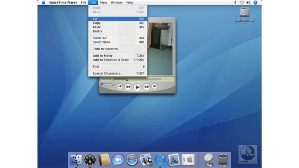 Editing Movies in QuickTime Pro: Mac OS X 10.4 Tiger Beyond the Basics