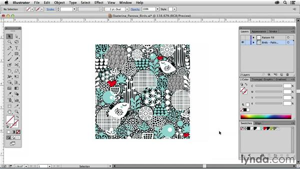 Ekaterina Panova, Russia: Drawing Vector Graphics: Patterns