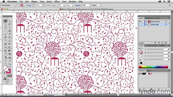 Raul Villanueva, Peru: Drawing Vector Graphics: Patterns