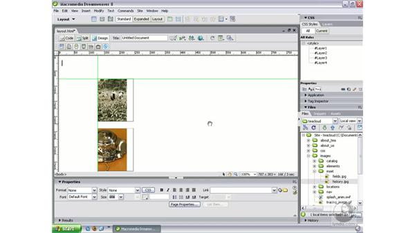 Guides and the Zoom tools: Dreamweaver 8 New Features