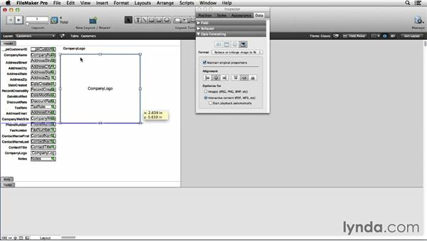 Working with container inspector options in Layout mode: FileMaker Pro 13 Essential Training