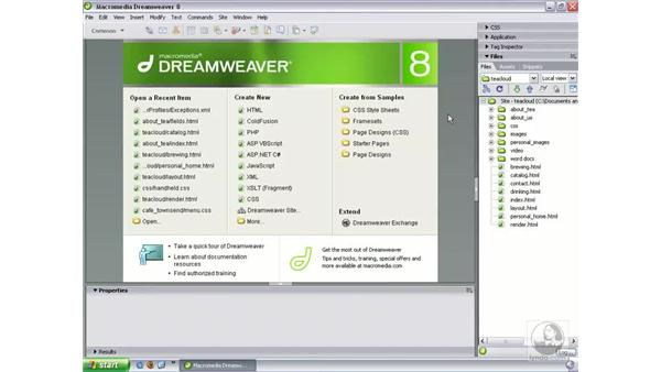 WCAG Priority 2 accessibility support: Dreamweaver 8 New Features